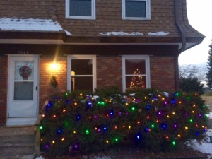 if you want our address to drive by our lights, let me know!